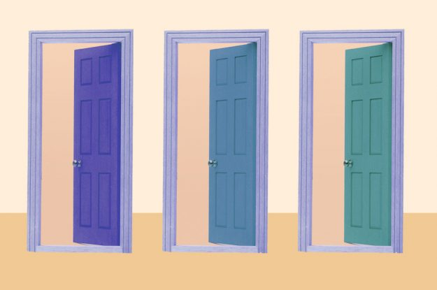 New Alleged Trend I'm Not Seeing: Interior Accent Doors