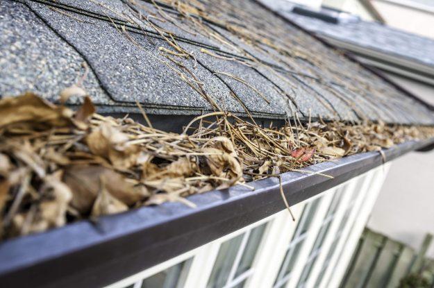 Homeseller Maintenance 101: Gutter and Roof Work
